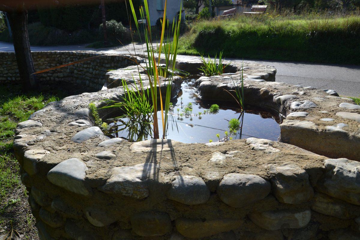 bassin en pierre, à mi-parcours du chemin de l'eau; plantés en iris d'eau